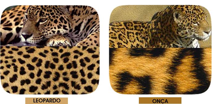 diferença entre estampa de onça e leopardo Fashion Blog MeninaIT