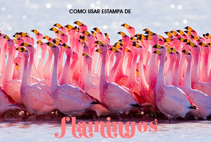 Fashion blog MeninaIT Como Usar Estampa de Flamingo