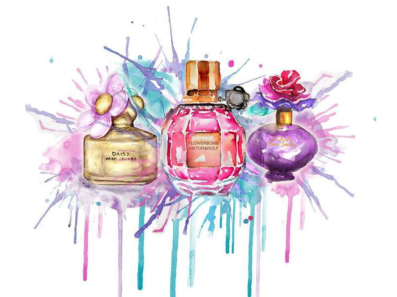 Entenda sobre a concentração dos perfumes
