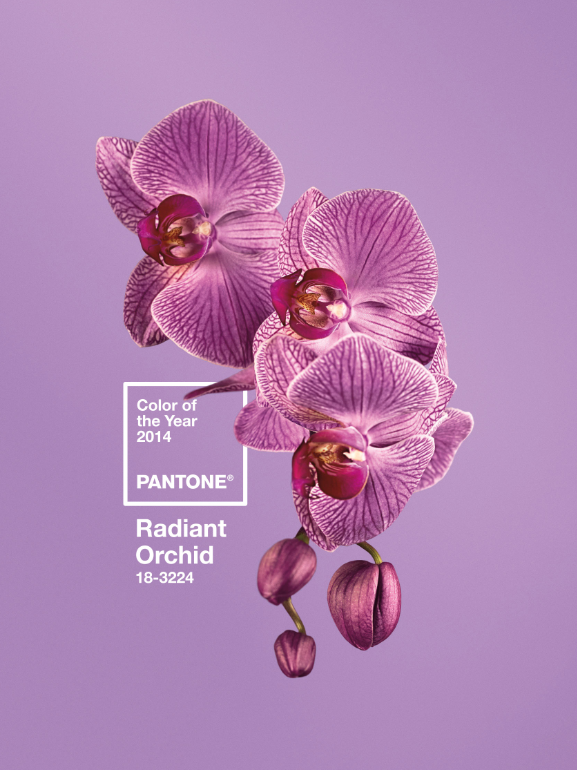 pantone-color-of-2014