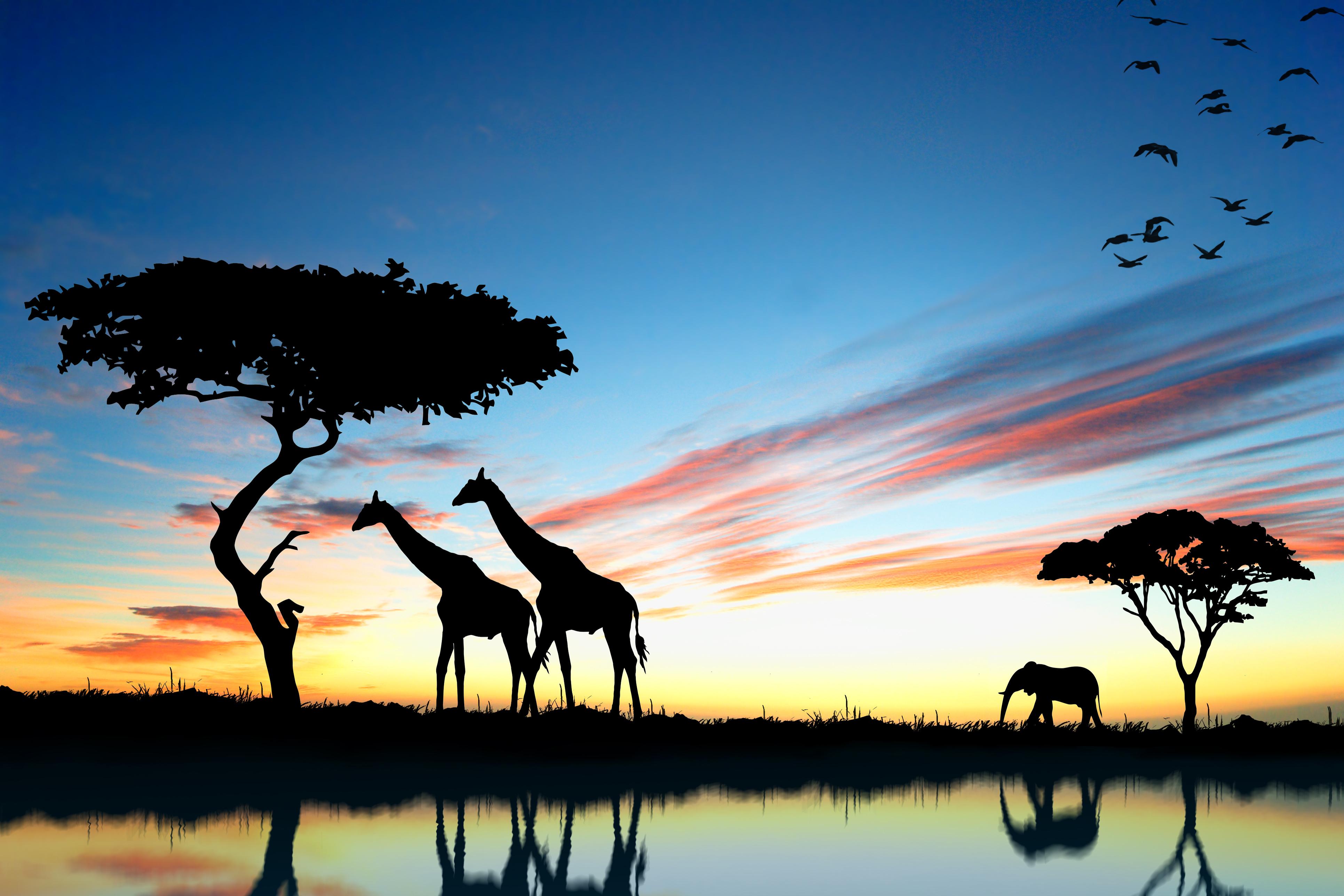 africa do sul turismo barato