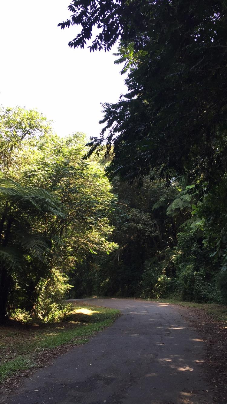 trilha da pedra grande 2