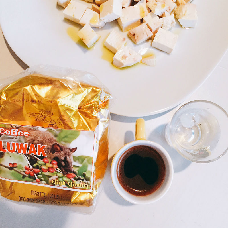 caf mais caro do mundo Kopi luwak