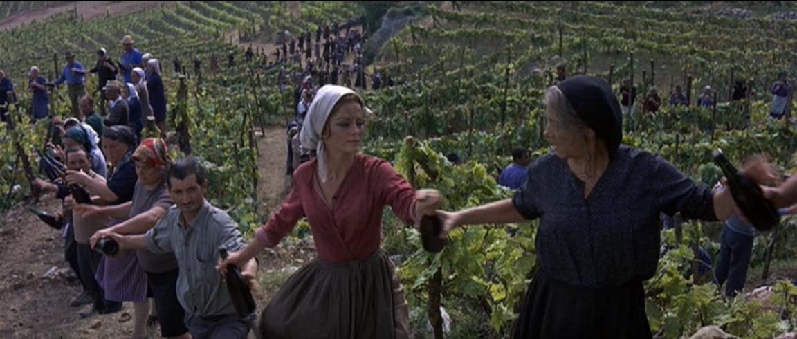 filme O Segredo de Santa Vitória
