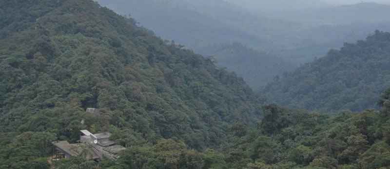 florestas-da-nuvem-do-equador