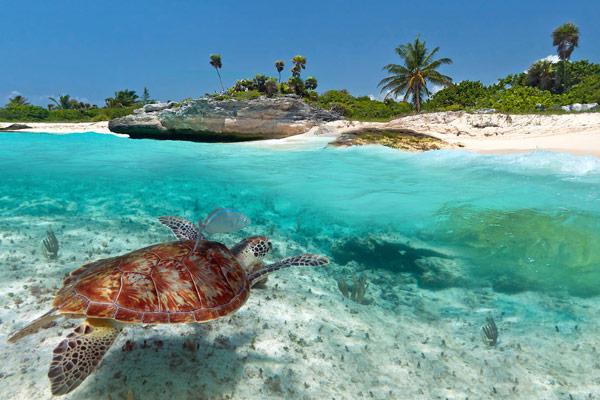 Ilha de Saint-Barth no Caribe