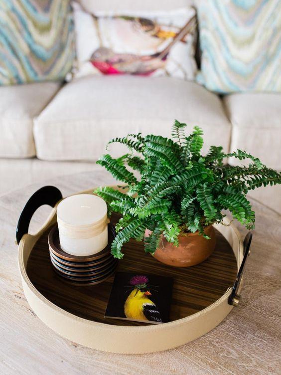 Samambaia-americana dentro de casa na decoração de mesa