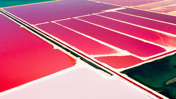Whyalla e Hutt Lagoon possuem a maior produção de microalgas do mundo