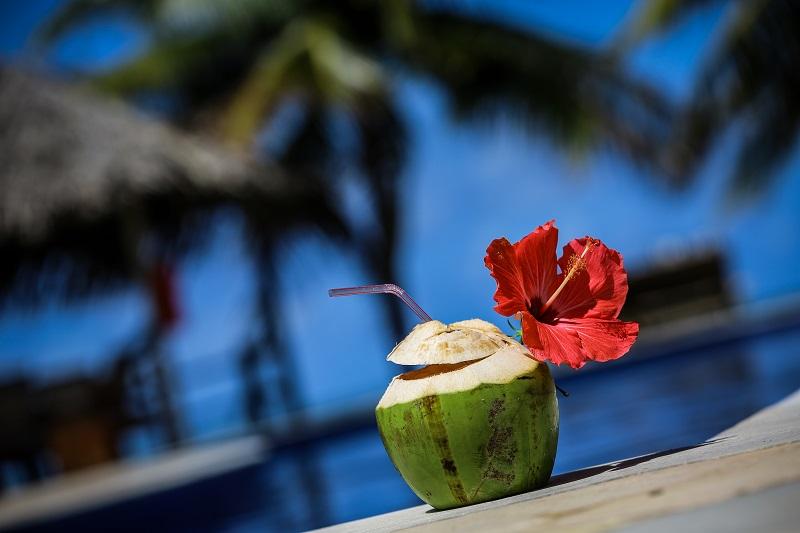 água de coco com flor de hibiscu