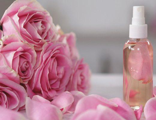 água de rosas benefícios e como fazer