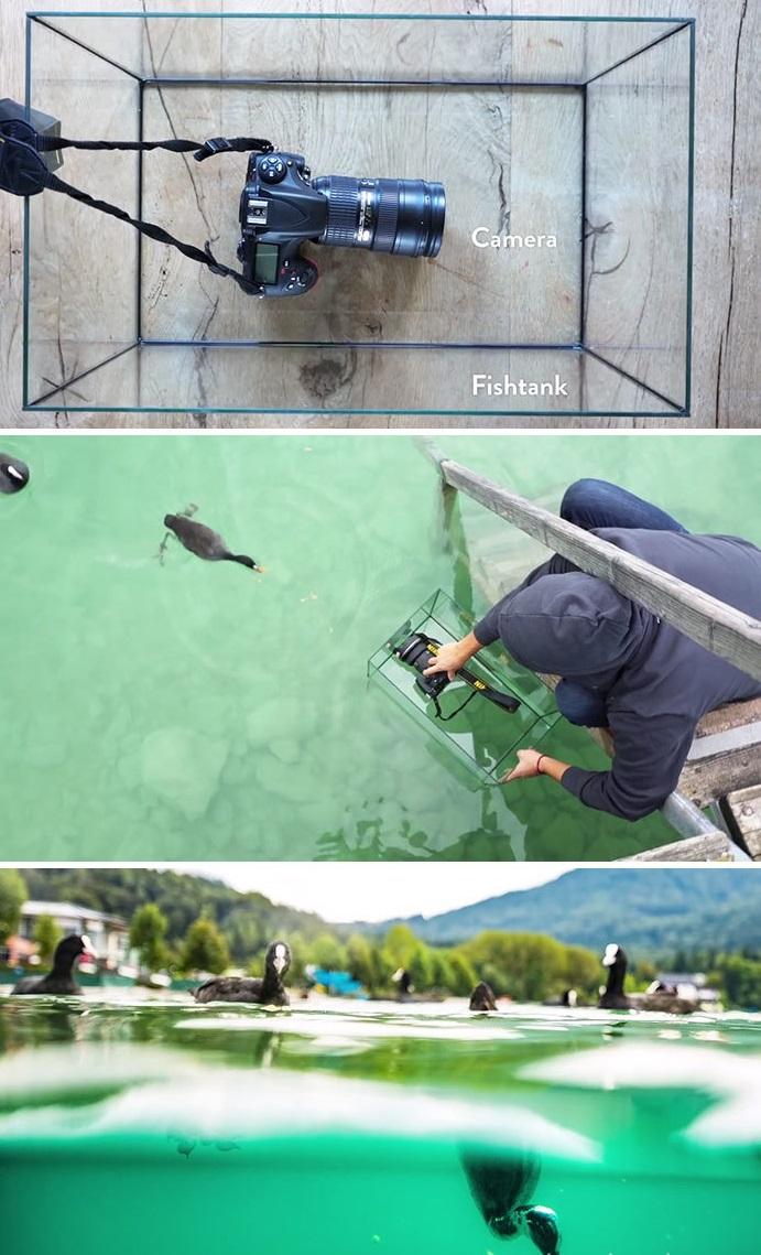 truques de fotografia aquário para fazer fotos