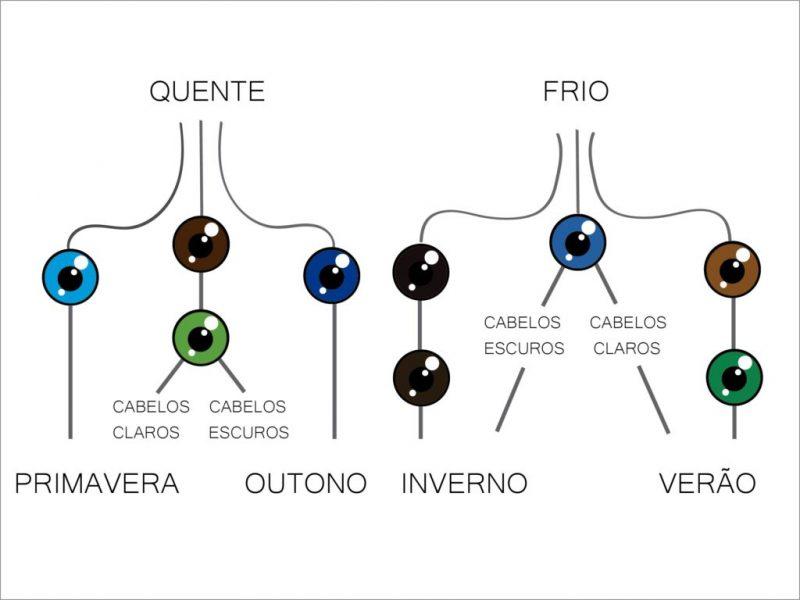 Organograma-novo-coloração pessoal