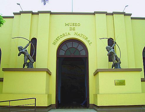 museu de historia natural peru