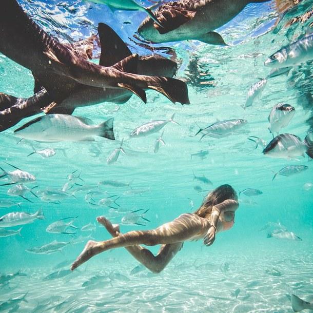 fotos no mar com peixes