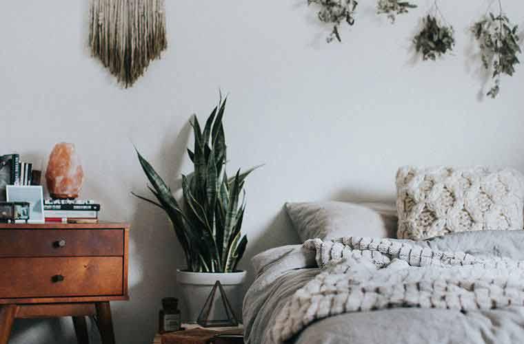 plantas-no-quarto-feng-shui