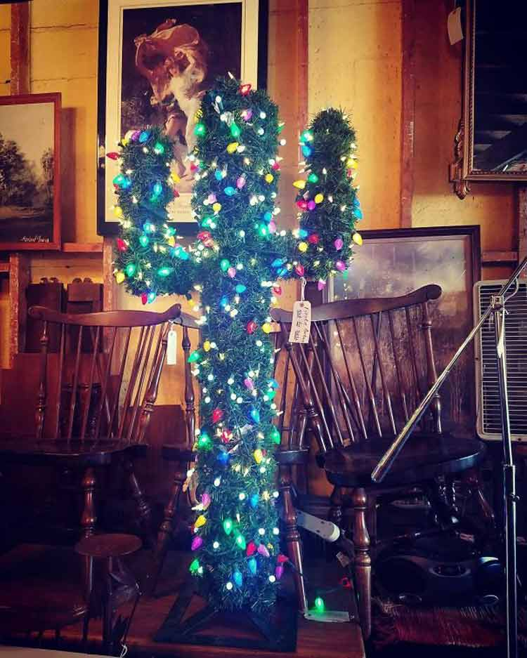 arvore-de-natal-em-cactus