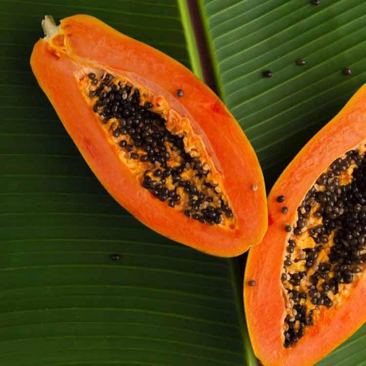 mamão-antioxidante