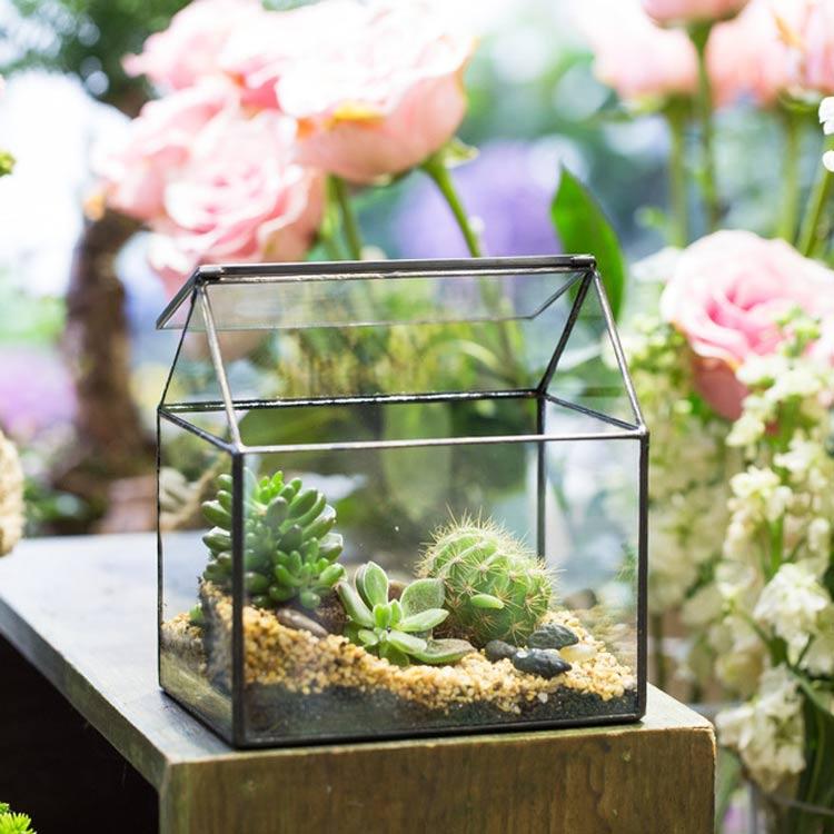 terrario-de-vidro
