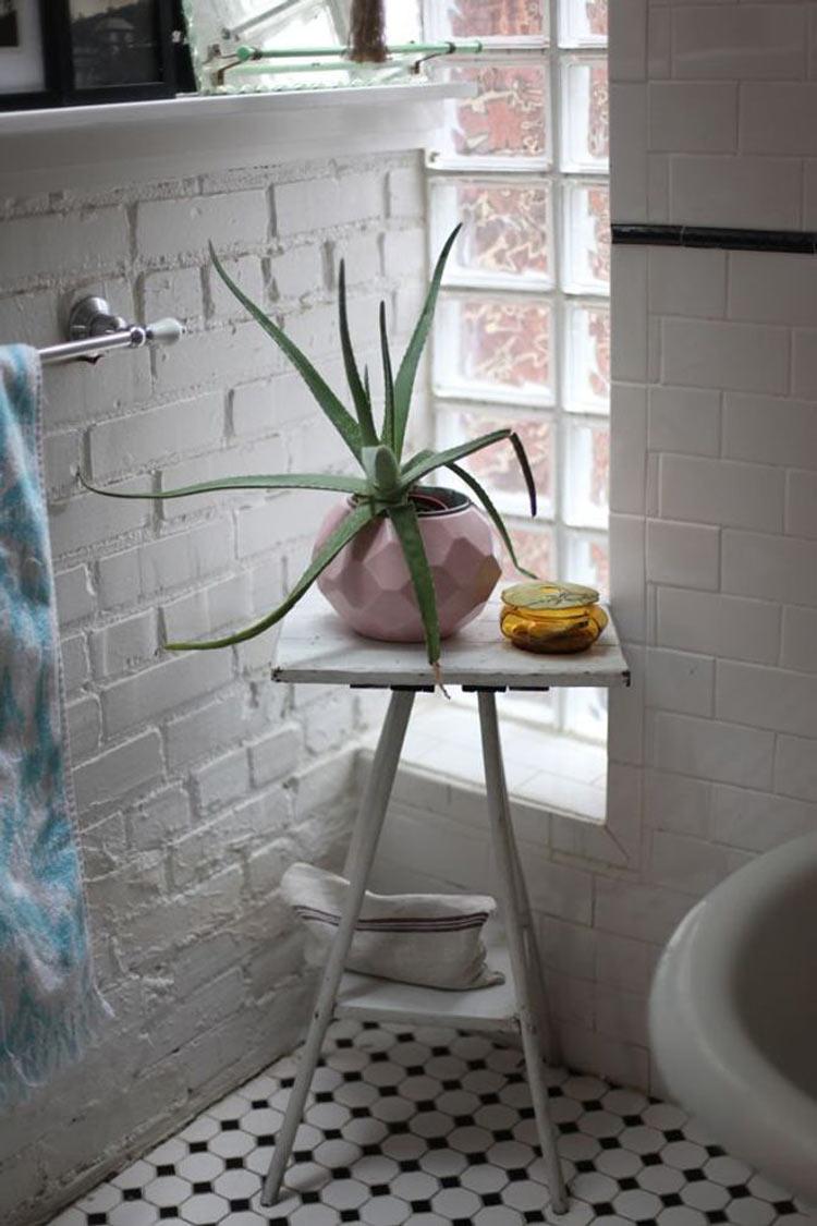 aloe-vera-no-banheiro