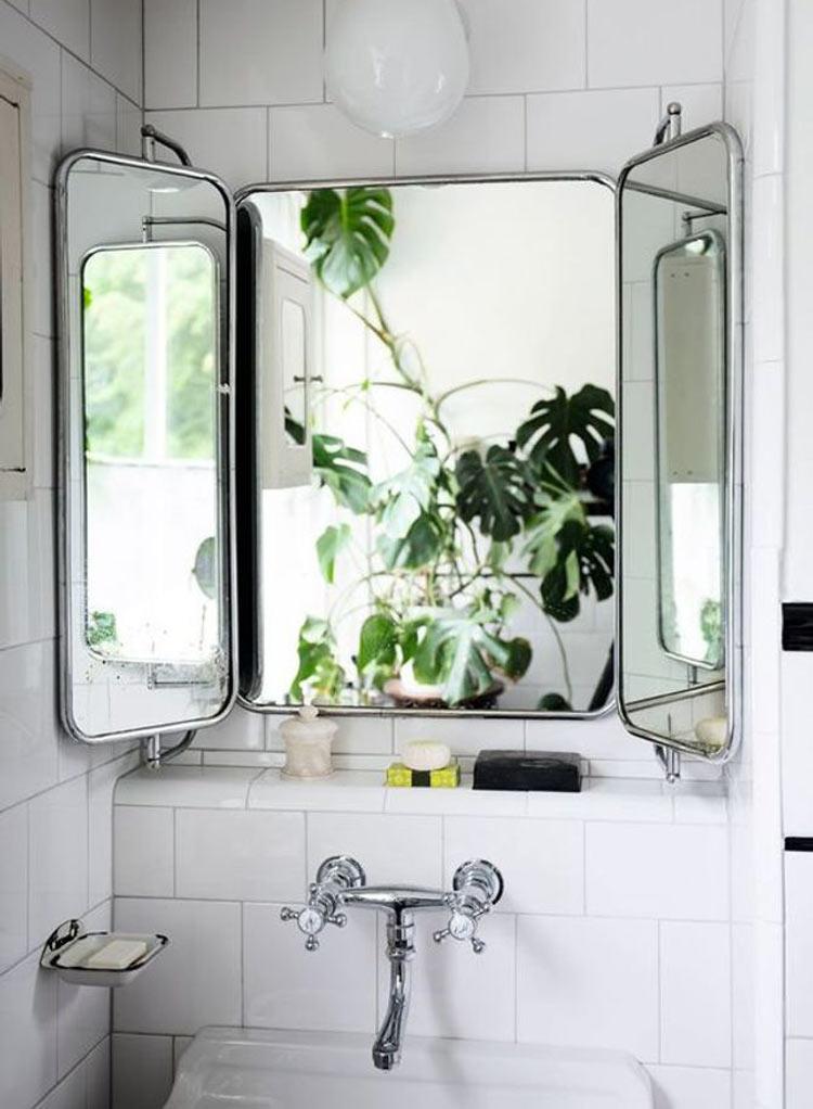 costela-de-adão-no-banheiro