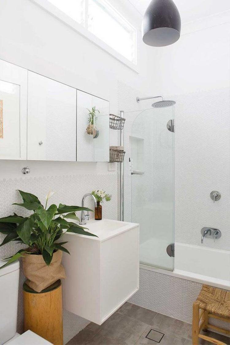 lirio-da-paz-no-banheiro