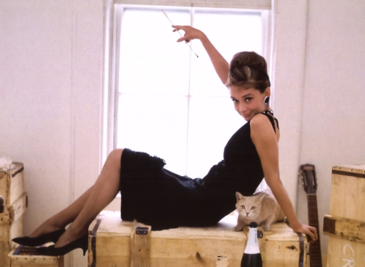 Audrey-Hepburn-foto-com-gato