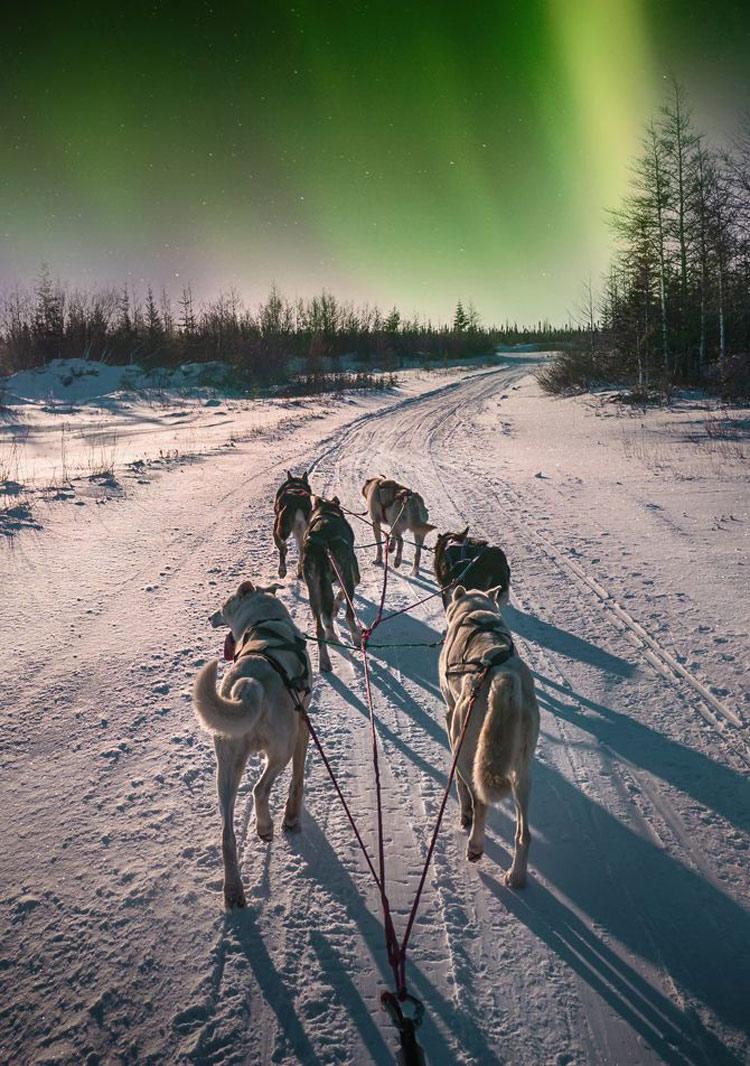 aurora-boreal-no-canadá