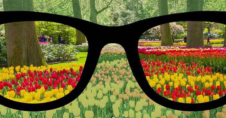 oculos-para-daltonicos