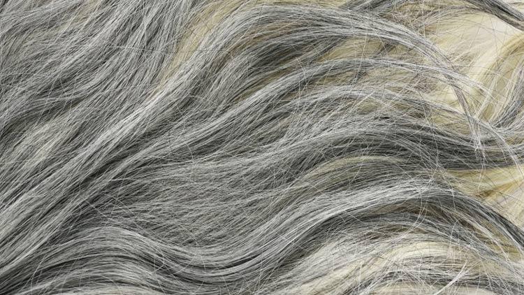por-que-o-cabelo-fica-grisalho