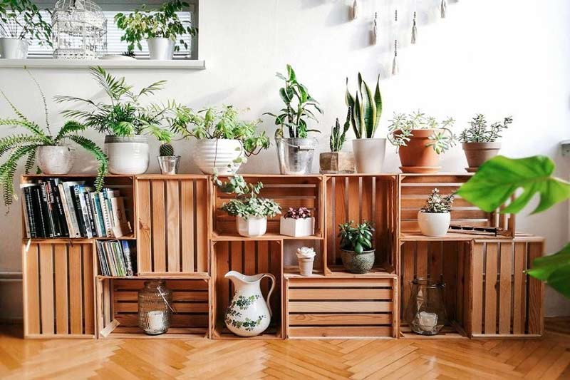 decoracao-sustentavel-plantas