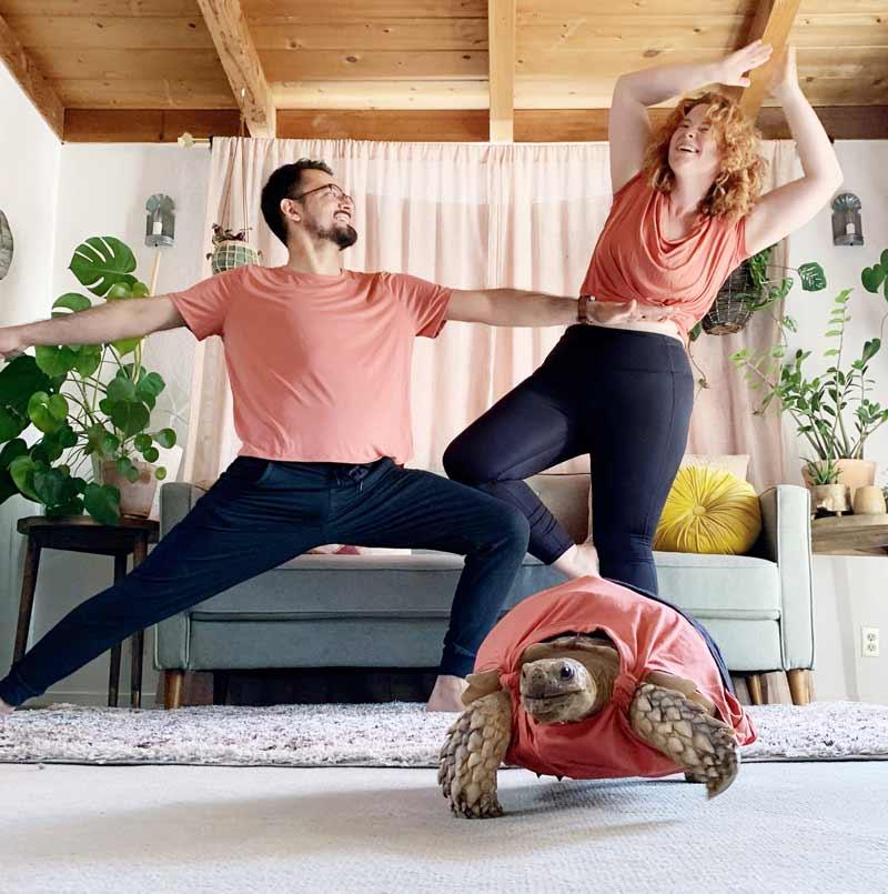 tartaruga-com-roupas