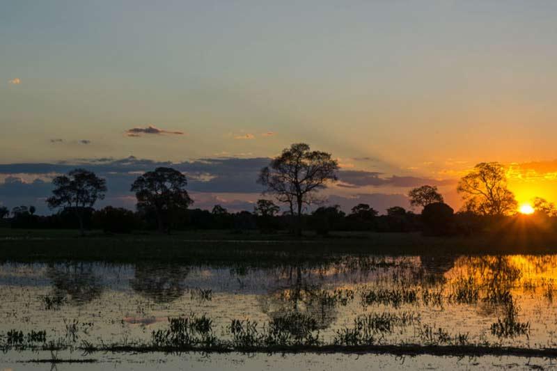 como-planejar-viagem-pantanal