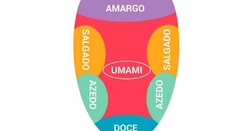 umami-lingua