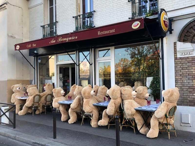 ursos-em-cafes-em-paris