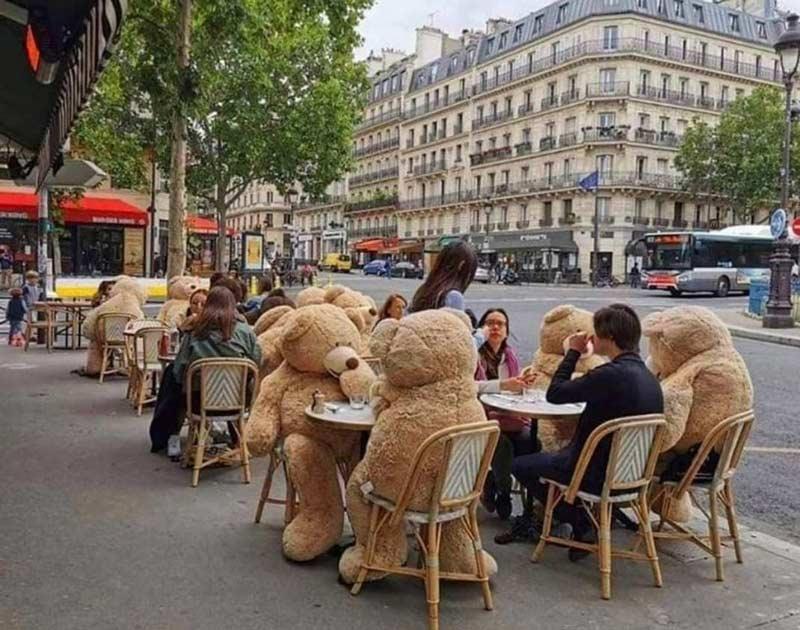 ursos-em-restaurante-em-paris-para-isolamento
