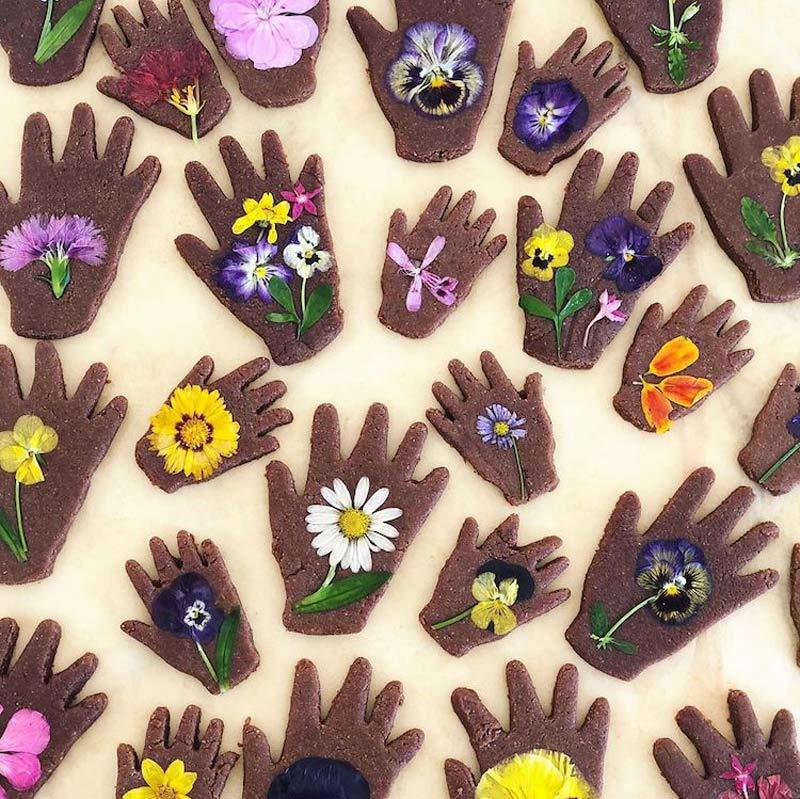 biscoito-amanteigado-com-flores-comestiveis-receitas