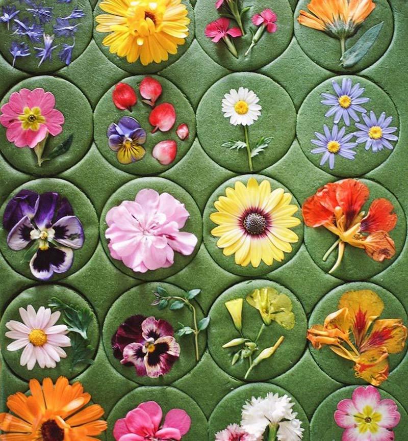 biscoito-amanteigado-com-flores-comestiveis