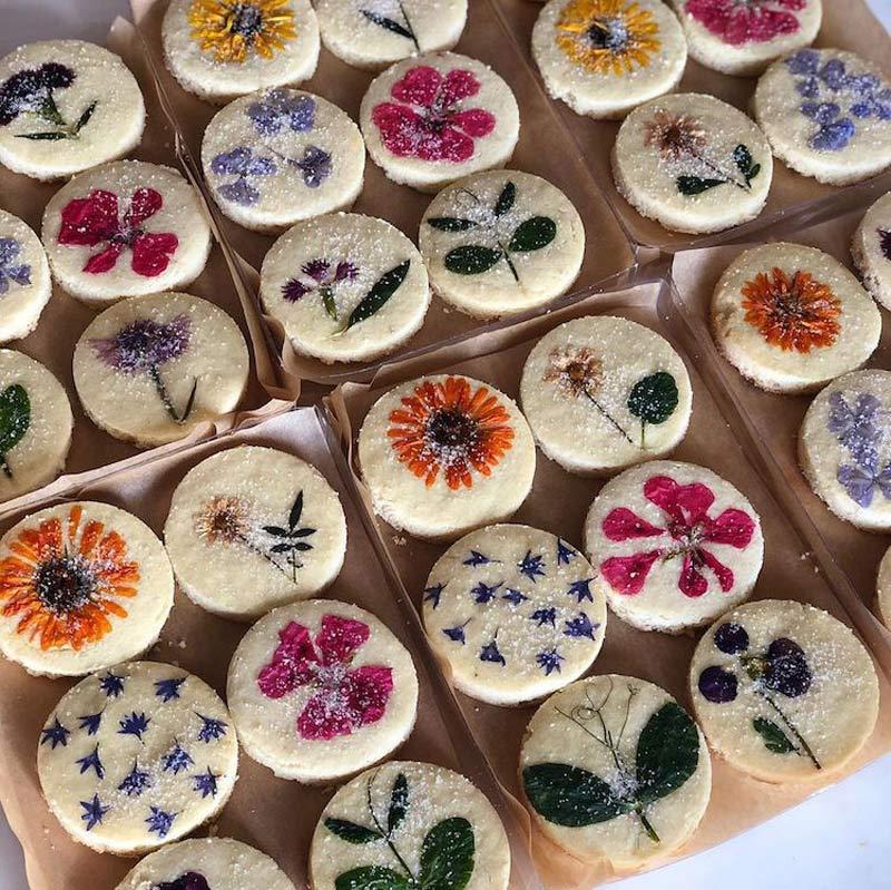 biscoito-com-flores-comestiveis-receitas-fotos