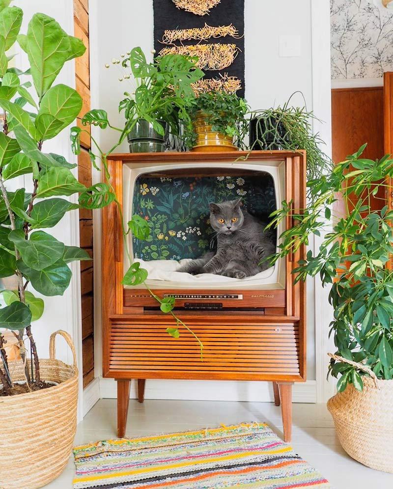 cama-gatos-tv-retro-como-fazer