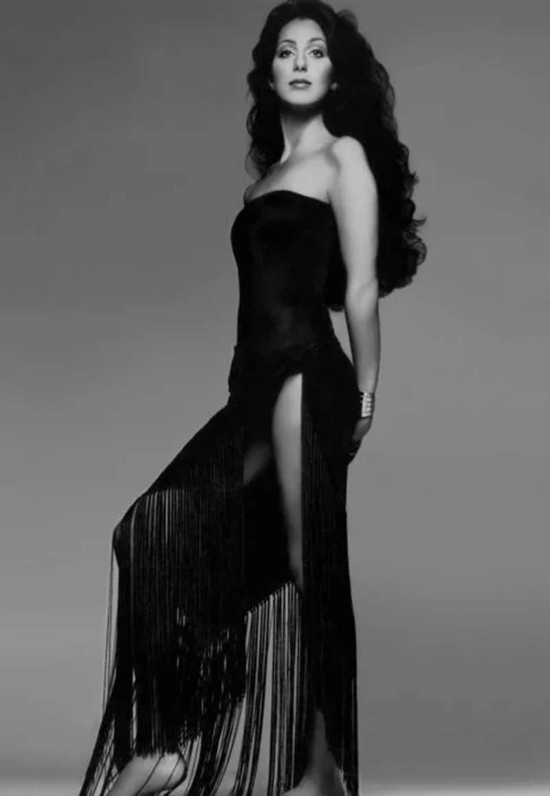 cher-singer-perfect