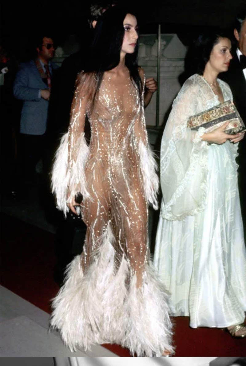 cher-dress-transparent-with-feathers