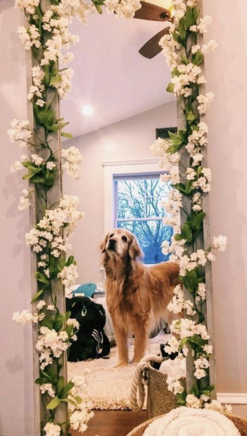 espelho-com-flores-na-volta