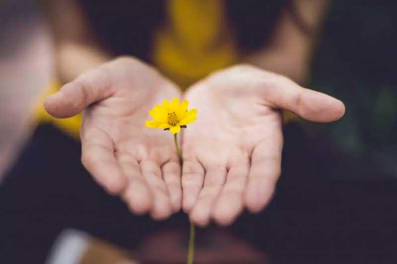 como-aprender-a-perdoar
