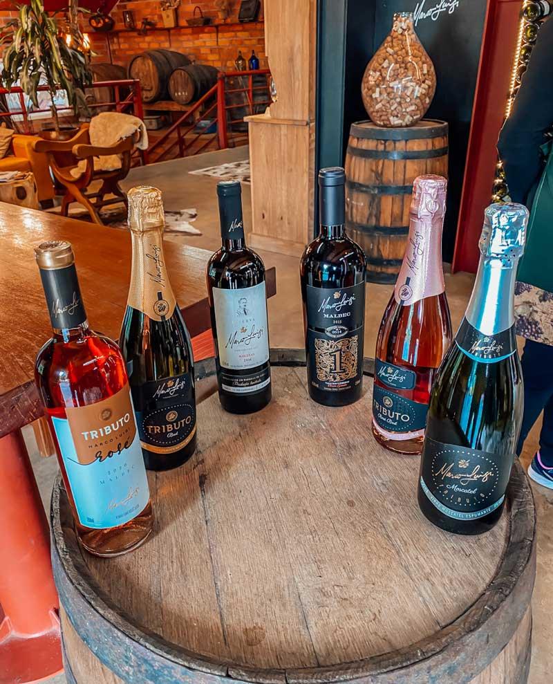 vinicola-marco-luigi-tour-passeio