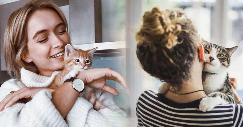 gatinhos-acham-que-voce-e-sua-mae