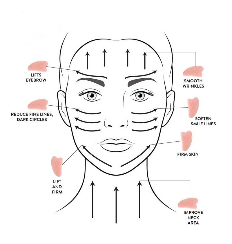 movimentos rolo facial gua sha