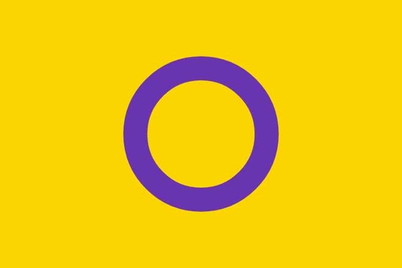 bandeira Intersexual