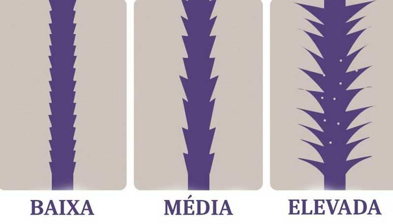 porosidade dos cabelos
